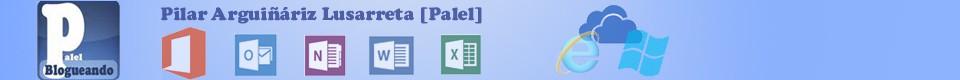 El Blog de PALEL