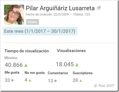 Estadísticas enero 2017 - palel.es